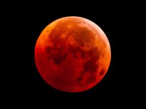 Orange-Moon